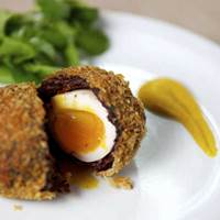 Scotch Egg at Hack & Hop