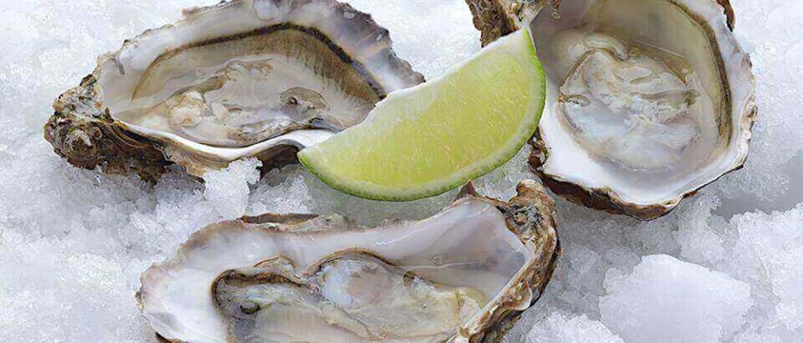 Oysters at The Barn Brasserie