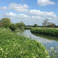 River at Orchard Garden Tea Room - Grantchester, Cambridge