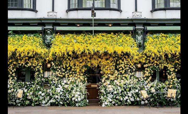 Exterior of The Ivy Chelsea GARDEN Room, KIng's Road London